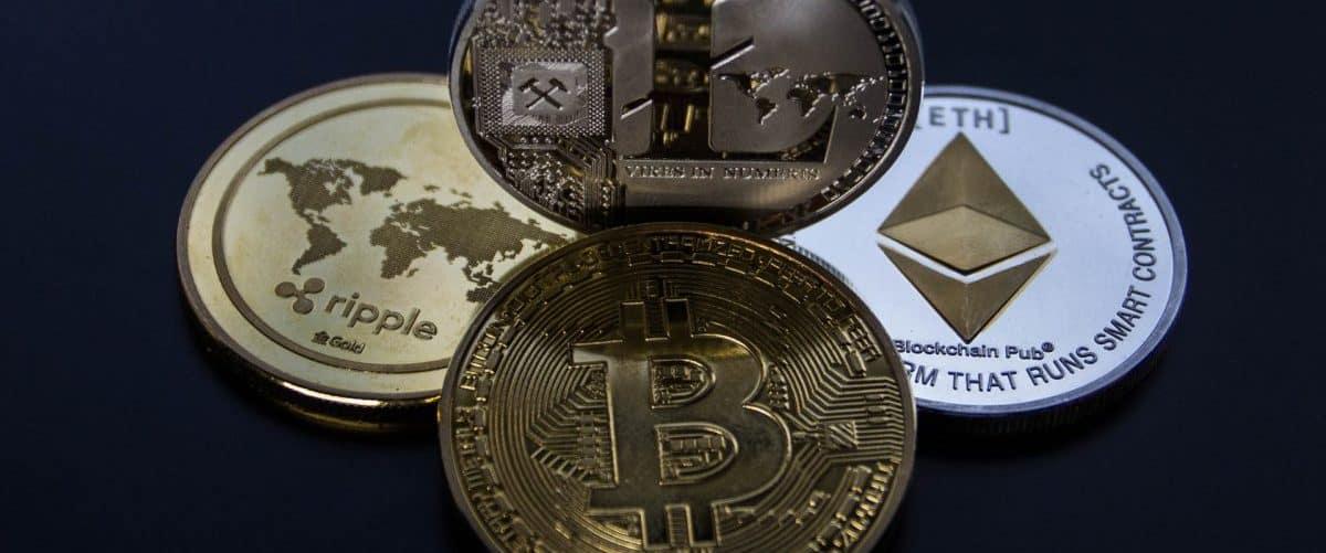 ein veganer bitcoin-händler ich muss schnell viel geld verdienen