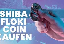 Shiba Floki Coin kaufen
